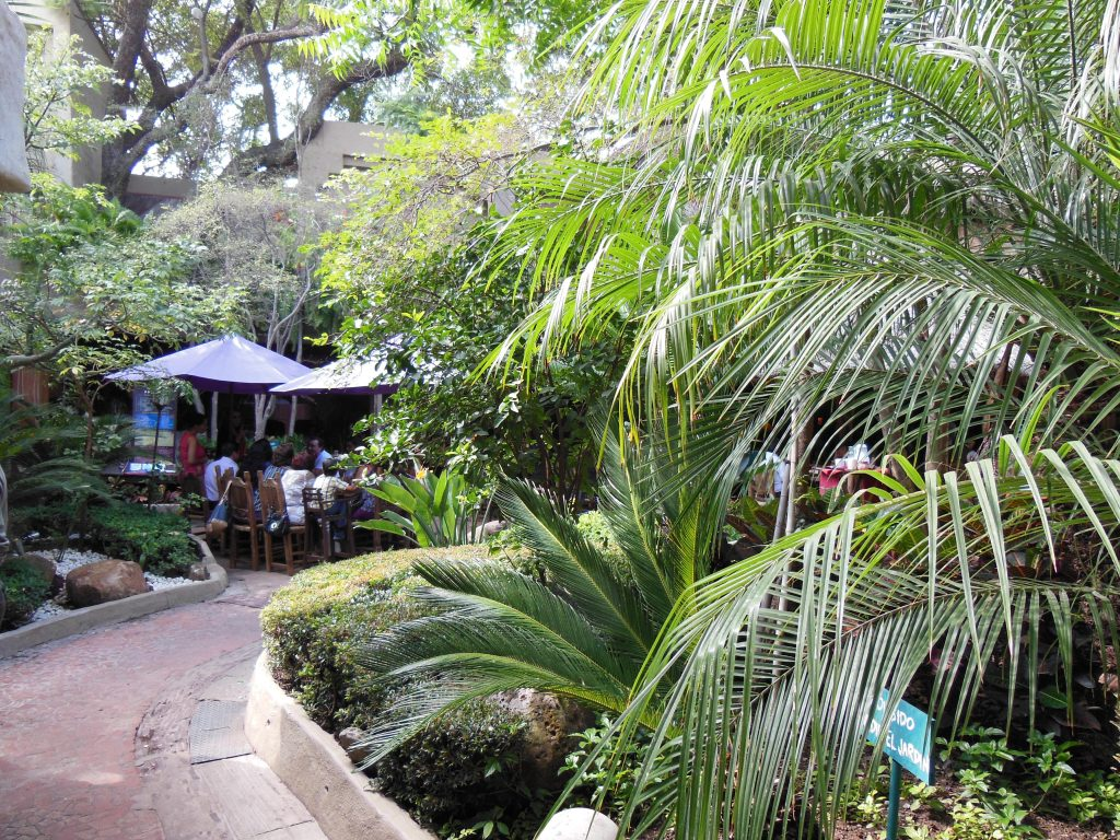 メキシコカフェの開放的なカフェ